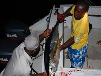 Le secteur des pêches