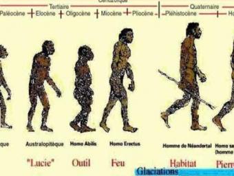 le Cameroun de la préhistoire à l'antiquité