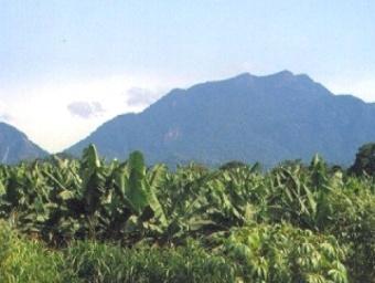 Le Mont Koupé