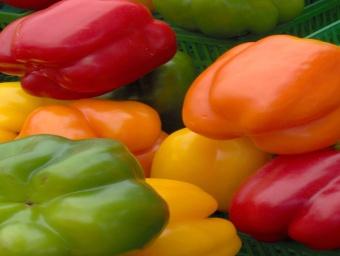 L'agriculture au Cameroun