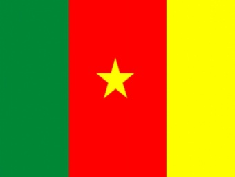 Le drapeau de la République du Cameroun